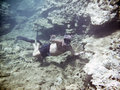 A man snorkeling Royalty Free Stock Photo