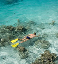 Man snorkeling cook islands south pacific in a tropical lagoon at aitutaki in the in the Royalty Free Stock Photography