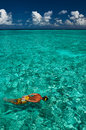 Man snorkeling crystal clear turquoise water tropical beach Stock Images