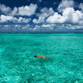 Man snorkeling in crystal clear turquoise water at tropical beach Stock Photography