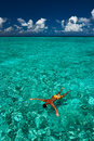 Man snorkeling in crystal clear turquoise water at tropical beach Royalty Free Stock Image