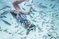 Man is snorkeling in wonderful ocean`s water Royalty Free Stock Photo