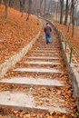 Man on stairs covered with leaves Stock Image