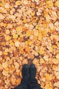 Man standing in the park on dry autumnal leaves pile Royalty Free Stock Photo