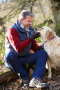 Man taking dog on walk through autumn woods smiling Royalty Free Stock Images