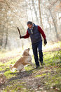 Man throwing stick for dog on walk through autumn woods Stock Image