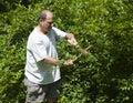 Man trimming bush with shears at suburban house Stock Image