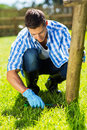 Man trimming grass home young at garden Royalty Free Stock Photos