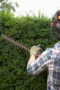 Man trimming hedge Stock Photos