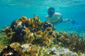 Man underwater snorkeling and looks sea life in shallow water tropical Royalty Free Stock Photos