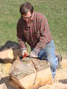 Man using chainsaw to cut logs Royalty Free Stock Photos