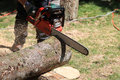 Man using a chainsaw to cut a tree trunk Royalty Free Stock Photo