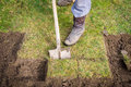 Man using spade for old lawn digging, gardening concept Royalty Free Stock Photo