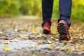 Man walking cross country trail in autumn forest Stock Photos