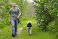 Man walking dog in countryside mature green Stock Photography