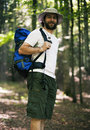 Man walking in the forest in a summer day Royalty Free Stock Photography