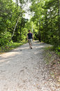 Man walking on forest trail Stock Photography