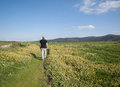 Man walking in a path in the middle of meadow Royalty Free Stock Photo