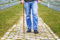 Man with walking stick in cemetery Royalty Free Stock Image