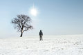 Man walking to lonely tree in winter Stock Photos
