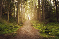 Man walking up path towards the light in magic forest. Royalty Free Stock Photo