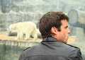 Man watching pollar bear young white Stock Photography