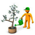 Man watering money tree Royalty Free Stock Photo