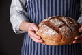 Man wearing apron holding freshly baked loaf of bread holds Royalty Free Stock Photo