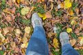 Man wearing jeans and sneakers doing step on an autumnal ground Royalty Free Stock Photo