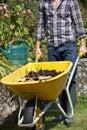 Man working in garden Royalty Free Stock Photo