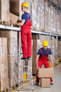Man working at height in warehouse standing on ladder while Royalty Free Stock Photo