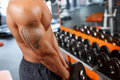 Man working out with dumbbell in gym powerful muscles close up of muscular tatoos Royalty Free Stock Photo