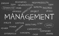 Management word cloud Royalty Free Stock Images