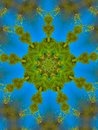 Green and Blue Mandala Designn