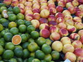 Mandarin and nectarine green oranges nectarines Royalty Free Stock Image