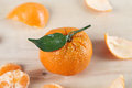 Mandarin orange and the peel Royalty Free Stock Photo