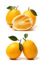 Mandarin oranges close up of isolated over white background Stock Photos