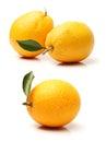 Mandarin oranges close up of isolated over white background Stock Photo