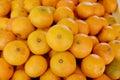 Mandarin oranges fresh at the market Stock Photography