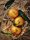 Mandarin organic ripe tangerines with green leaves lying on the straw Stock Photo