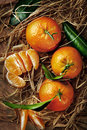 Mandarin organic ripe tangerines with green leaves lying on the straw Royalty Free Stock Photo