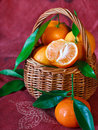 Mandarines. Stock Images