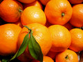 Mandarines Background Stock Photography