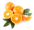 Mandarins ripe on white background Stock Photography