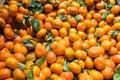 Mandarins or satsumas on display with leaves Royalty Free Stock Photo