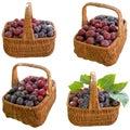Manden met fruit Royalty-vrije Stock Foto