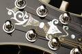 Mandolin detail on black background isolated Royalty Free Stock Image