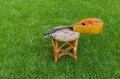 Mandoline having rest on a stool Royalty Free Stock Photo