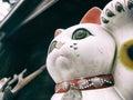 Maneki neko japanese lucky cat Royalty Free Stock Photo