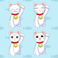 Maneki neko vector this is file of eps format Stock Photography